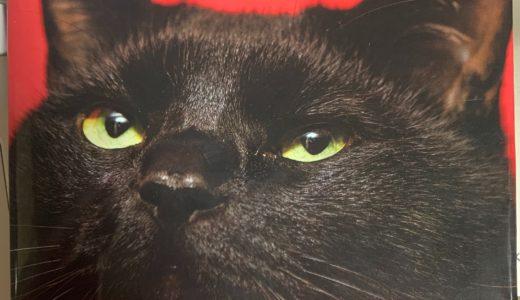 おすすめの本 『猫のための家庭の医学』